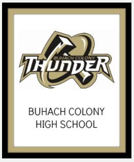 Image: BCHS Logo